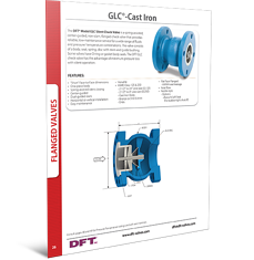 DFT- GLC Cast Iron check valve