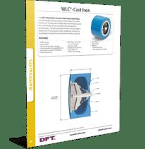 DFT- WLC Cast Iron check valve